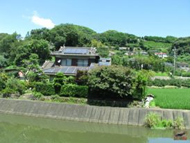 This is the countryside at the entrance to Nagasaki Bio Park with this beautiful Japanese house. I wonder who lives there, just a few minutes walk from the Capybaras? The photo doesn't do justice to how pretty and rural the area is.